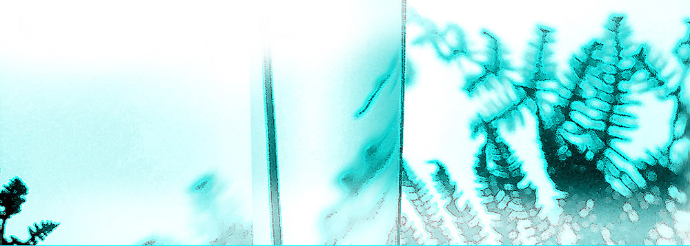 motion of stillness banner